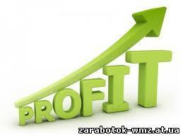 Как сайт приносит прибыль?